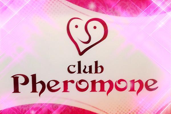 club PHEROMONE(フェロモン)の紹介1