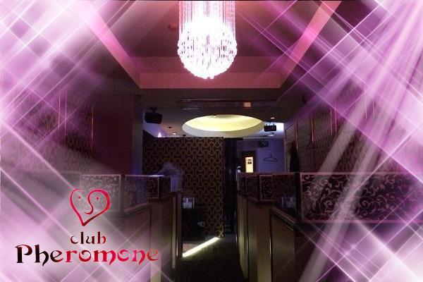 club PHEROMONE(フェロモン)の紹介4