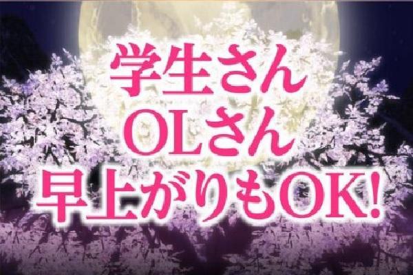 織姫(オリヒメ)の紹介1