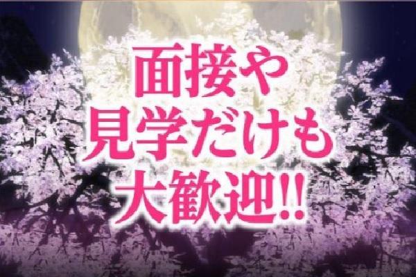 織姫(オリヒメ)の紹介2