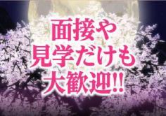 織姫(オリヒメ)の紹介・サムネイル2