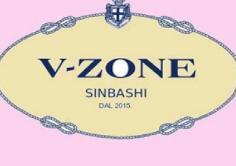 V-ZONE(ブイゾーン)の紹介