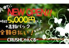 CRUSH じゃんぐるー(クラッシュ ジャングルー)の紹介