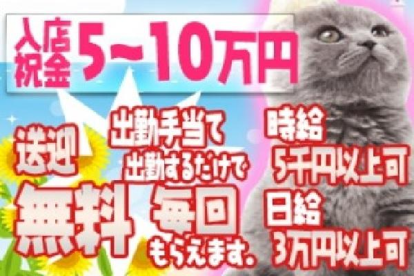 赤塚 雅(ミヤビ)の紹介1