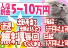 赤塚 雅(ミヤビ)の紹介・サムネイル1