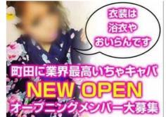 遊姫屋~華姫~(ユウヒヤ ハナビ)の紹介・サムネイル3