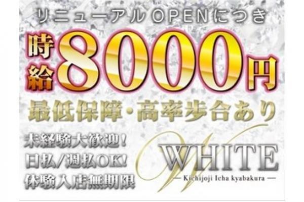 WHITE(ホワイト)の紹介1