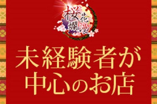 桜花爛漫(オウカランマン)の紹介1