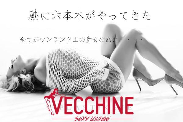VECCHINE(ベッチン)の紹介1