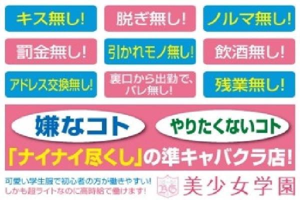 美少女学園(ビショウジョガクエン)の紹介1