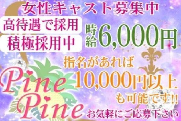 PINE PINE(パインパイン)の紹介1