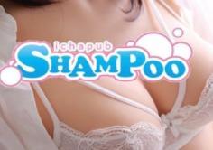 SHAMPOO(シャンプー)の紹介・サムネイル5