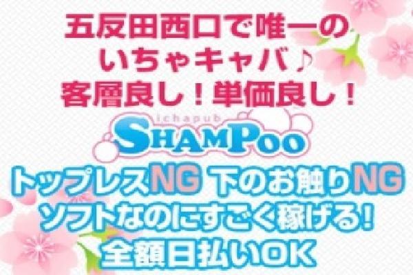 SHAMPOO(シャンプー)の紹介6