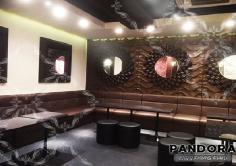 PANDORA(パンドラ)の紹介