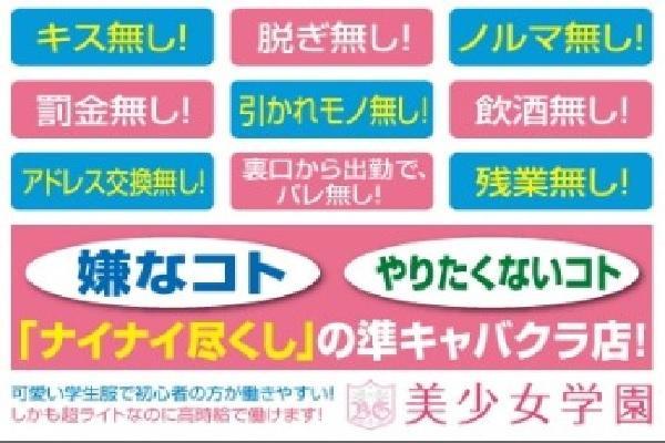 美少女学園(ビジョガクエン)の紹介2