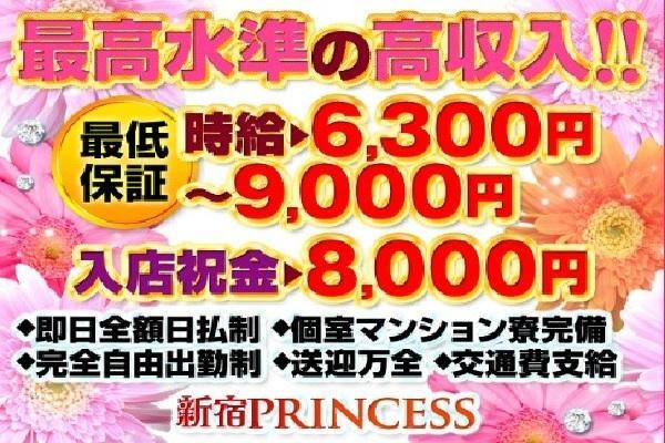 PRINCESS(プリンセス)の紹介0