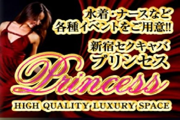 PRINCESS(プリンセス)の紹介1