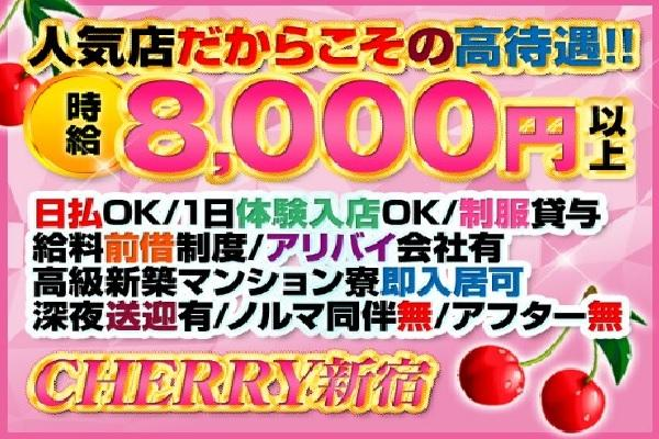 CHERRY 新宿(チェリーシンジュク)の紹介2