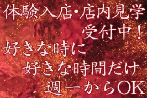 貴婦人(キフジン)の紹介3