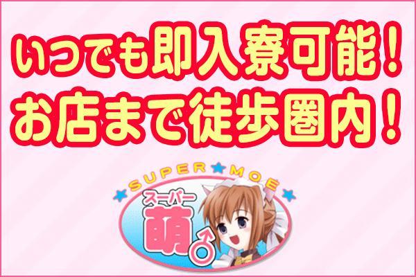 スーパー萌(スーパーモエ)の紹介3