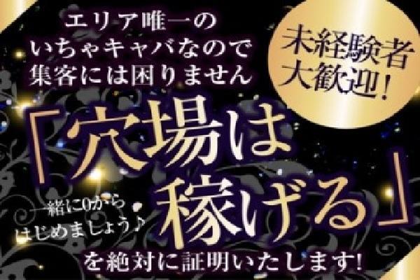 姫(ヒメ)の紹介2