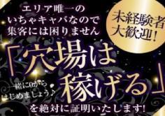 姫(ヒメ)の紹介・サムネイル2