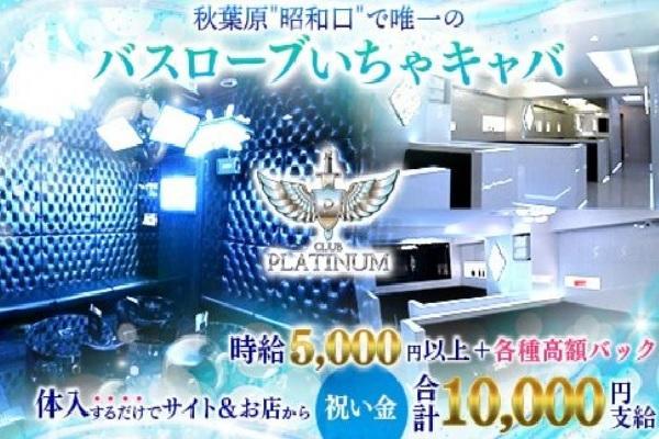 platinum(プラチナム)の紹介0