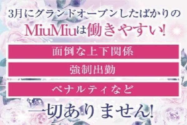 MiuMiu(ミュウミュウ)の紹介2