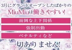 MiuMiu(ミュウミュウ)の紹介・サムネイル2