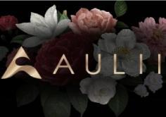 AULII(アウリィ)の紹介