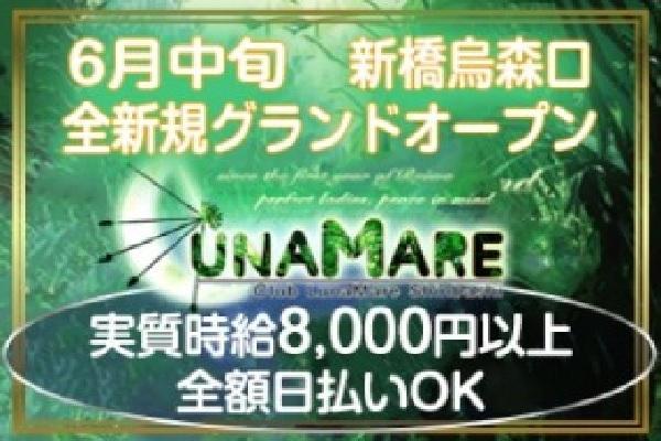 LUNAMARE(ルナマーレ)の紹介1