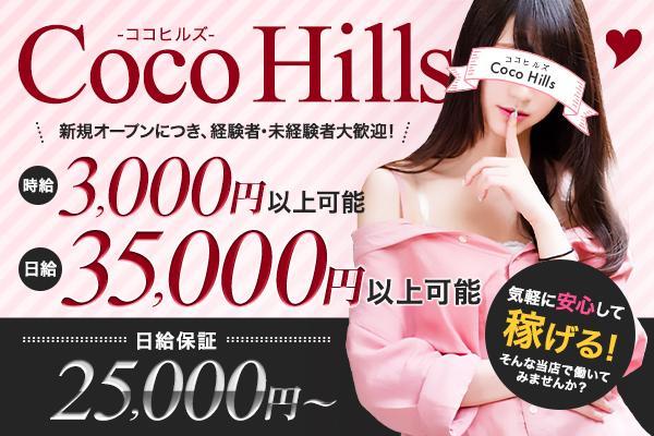 Coco Hills(ココヒルズ)の紹介0