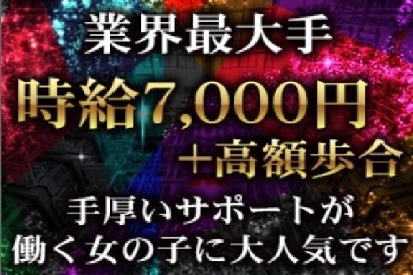 渋谷フラミンゴ(シブヤフラミンゴ)の紹介1