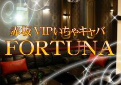 FORTUNA(フォーチュナ)の紹介