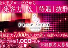 横浜FLAMINGO(ヨコハマフラミンゴ)の紹介