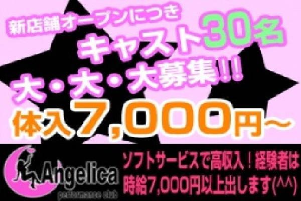 Angelica(アンジェリカ)の紹介0