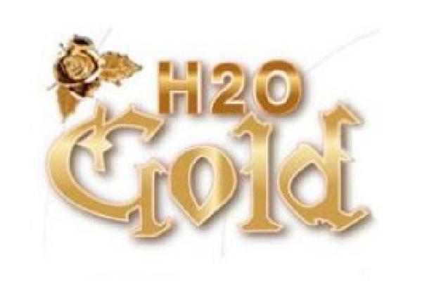 H2O GOLD(ゴールド)の紹介0