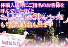 anela(アネラ)の紹介・サムネイル2
