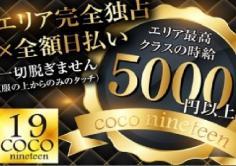 COCO19(ココナインティーン)の紹介