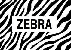 ZEBRA(ゼブラ)の紹介