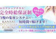 KANSAI DOUYAMA KUKOU(関西堂山空港)(かんさいどうやまくうこう)の紹介・サムネイル0