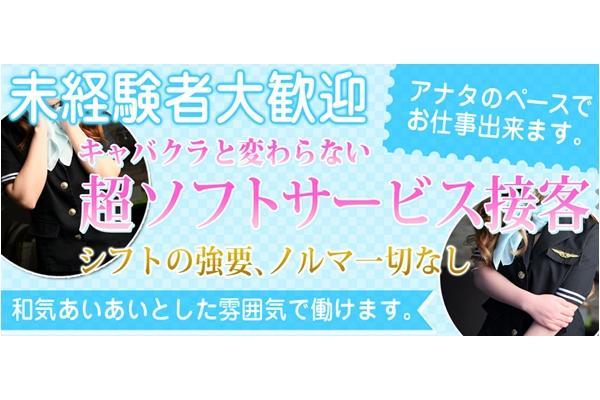 KANSAI DOUYAMA KUKOU(関西堂山空港)(かんさいどうやまくうこう)の紹介1