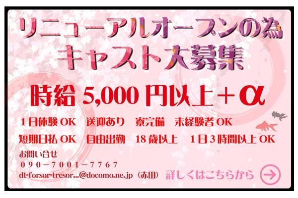 姫路 セクキャバ 遊廓(ヒメジ セクキャバ ユウカク)の紹介1