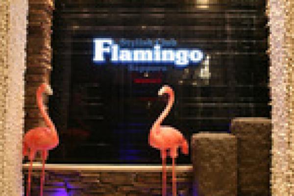 FLAMINGO(フラミンゴ)の紹介0