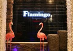 FLAMINGO(フラミンゴ)の紹介