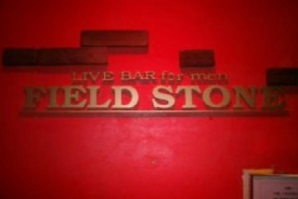 FIELD STONE(フィールドストーン)の紹介2
