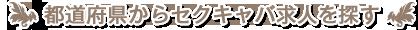 都道府県からセクキャバを探す